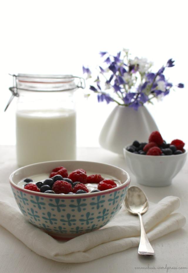 EmmaBee.Joghurt4
