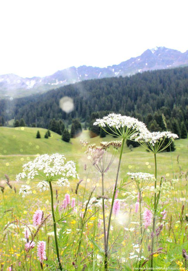 EmmaBee.Schweiz1